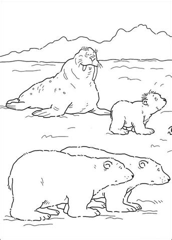 Polar Bears And Walrus coloring page | Super Coloring