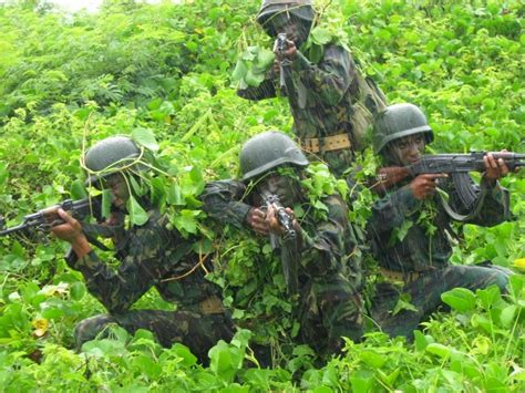 World Military and Police Forces: Seychelles